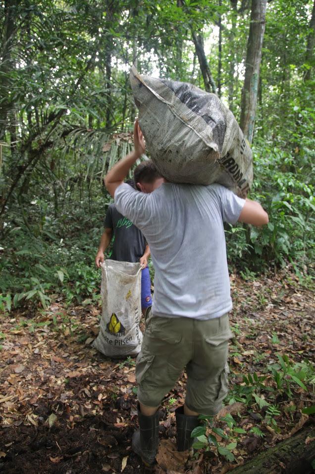 Die Nüsse werden im Regenwald gesammelt und zu Fuß zur nächsten Straße gebracht -- echte Arbeit!^^